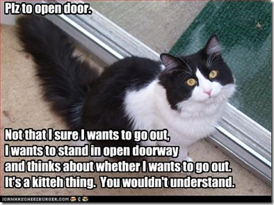 funny-pictures-cat-asks-you-to-open-door
